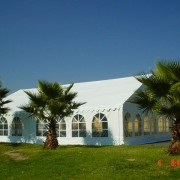 Frame Tents & Free Standing Canopies
